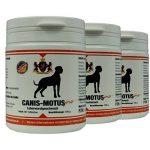 2x Canis Motus forte saucisse de foie–Complément Doublure de la classe Extra le chien de la marque Feddema image 1 produit