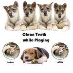 Adogo pour animal domestique à mâcher durable Toys-cotton Cordes pour chiens (lot de 6) de la marque Adogo image 4 produit