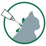 Advantage 80 Chat/Lapin 4-10 kg 6 pipettes antiparasitaires de la marque Bayer image 3 produit