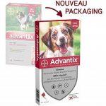 Advantix Chien moyen 10 à 25 kg- 4 pipettes antiparasitaires 2,5 ml de la marque Bayer image 1 produit