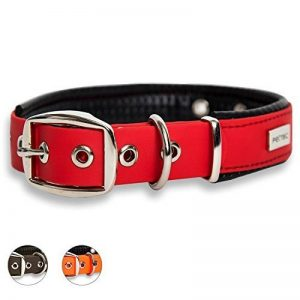 advantix collier chien TOP 3 image 0 produit
