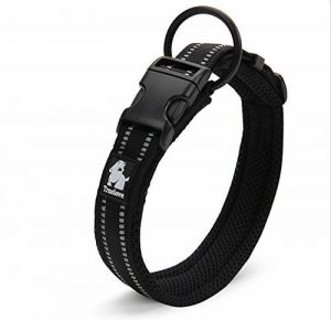 advantix collier chien TOP 5 image 0 produit