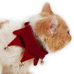 AiSi Agréable Collier Réglable Chien Chiot Chat Chaton Pet avec Clochette Décoration Chien Rouge Taille M de la marque AiSi image 2 produit