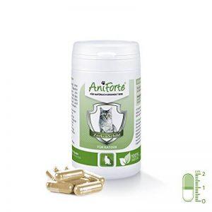 AniForte Tique Bouclier - Anti Tiques 60 Capsules pour Chats, Anti-parasitaire, Naturel, Tuer, Prévenir et Contrôler de la marque AniForte image 0 produit