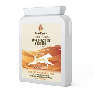 Best Paw Nutrition Digestion pur Probiotiques 2 milliards 120 Tablets de la marque Best Paw Nutrition image 0 produit