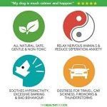 calmant pour chien nerveux TOP 13 image 3 produit