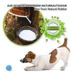 Chien de jouet de PetPäl en caoutchouc naturel - Caoutchouc pour chien - en caoutchouc robuste Balle de jeu pour chien - Jouet à mâcher - pour grand & petit chien - Balle pour chien de la marque PetPäl image 3 produit