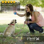 Chien de jouet de PetPäl en caoutchouc naturel - Caoutchouc pour chien - en caoutchouc robuste Balle de jeu pour chien - Jouet à mâcher - pour grand & petit chien - Balle pour chien de la marque PetPäl image 1 produit