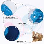 Collerette de Protection Cône, PETBABA Rembourré Elisabéthain Collier pour Chiot Chat Bleu S de la marque PETBABA image 1 produit