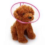 Collerette de rétablissement pour chiens et chats Mogoko - Collier transparent, avec contour mou pour permettre de respirer de la marque Mogoko image 1 produit