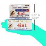 collier anti puce petit chien TOP 1 image 3 produit
