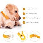 collier anti puce petit chien TOP 2 image 3 produit