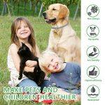 collier anti puce petit chien TOP 6 image 1 produit