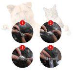 Collier anti-puces pour chien - 6mois de protection anti-puces et de contrôle des tiques - Pour chiens chats - Taille réglable et étanche - Arrête les piqûres des parasites et les démangeaisons de la marque image 6 produit