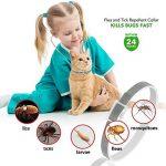 Collier anti-puces pour chien - 6mois de protection anti-puces et de contrôle des tiques - Pour chiens chats - Taille réglable et étanche - Arrête les piqûres des parasites et les démangeaisons de la marque U-picks image 2 produit