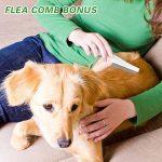 Collier anti-puces pour chien - 6mois de protection anti-puces et de contrôle des tiques - Pour chiens chats - Taille réglable et étanche - Arrête les piqûres des parasites et les démangeaisons de la marque U-picks image 5 produit