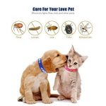 Collier antiparasitaire pour grands/petits chiens et chats, Colliers anti-puces et tiques, Antiparasitaire externe pour chat et chiens, contre les puces et les tiques (petits chiens) de la marque SEVICAT image 1 produit