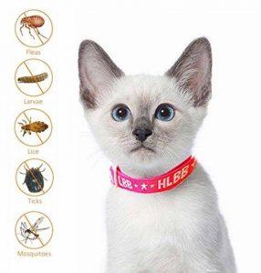 Collier antiparasitaire pour grands/petits chiens et chats, Colliers anti-puces et tiques, Antiparasitaire externe pour chat et chiens, contre les puces et les tiques (chats) de la marque SEVICAT image 0 produit