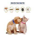 Collier antiparasitaire pour grands/petits chiens et chats, Colliers anti-puces et tiques, Antiparasitaire externe pour chat et chiens, contre les puces et les tiques (chats) de la marque SEVICAT image 1 produit