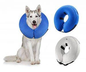 collier cône pour chien TOP 11 image 0 produit