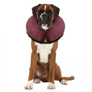 collier cône pour chien TOP 7 image 0 produit