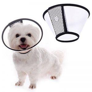 collier cône pour chien TOP 8 image 0 produit