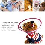 collier cône pour chien TOP 9 image 4 produit