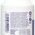 Comprimés glucosamine et chondroïtine, pour chats et chiens, 100 de la marque GC100 - Dorwest image 1 produit