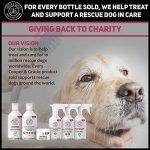 Cooper et Gracie–puces et tiques Chiens protection–Traitement spray–cruauté gratuit Pet Care–500ml de la marque Cooper And Gracie C&G Cruelty free Pet Care image 6 produit
