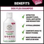 Cooper et Gracie Shampooing Traitement anti-puces pour chiens–Cruelty gratuit–Petite ou Grande Toilettage–500ml de la marque Cooper and Gracie image 1 produit