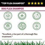 Cooper et Gracie Shampooing Traitement anti-puces pour chiens–Cruelty gratuit–Petite ou Grande Toilettage–500ml de la marque Cooper and Gracie image 4 produit