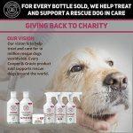 Cooper et Gracie Shampooing Traitement anti-puces pour chiens–Cruelty gratuit–Petite ou Grande Toilettage–500ml de la marque Cooper and Gracie image 5 produit