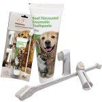 Dentifrice enzymatique pour chien et 3 brosses à dents - Kit de soins dentaires pour chiens et chats de la marque Petstoreo image 1 produit