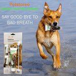 Dentifrice enzymatique pour chien et 3 brosses à dents - Kit de soins dentaires pour chiens et chats de la marque Petstoreo image 3 produit