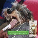 Dentifrice enzymatique pour chien et 3 brosses à dents - Kit de soins dentaires pour chiens et chats de la marque Petstoreo image 4 produit