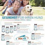 DOG FIT by PreThis CARE senior | Complément alimentaire naturel pour chiens âgés | Articulations, yeux, pelage, peau & dents | Certifié ISO ! de la marque DOG FIT by PreThis image 3 produit