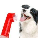 Doigt a Brosse Chien [2 set], Beetest® doux brosses à dents pour animaux de compagnie Set Dual Headed Hygiène dentaire brosses à dents brosses à dents pour chien chat dents soins de nettoyage (aléatoire couleur) de la marque Beetest image 5 produit