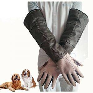 douleur chien médicament TOP 12 image 0 produit