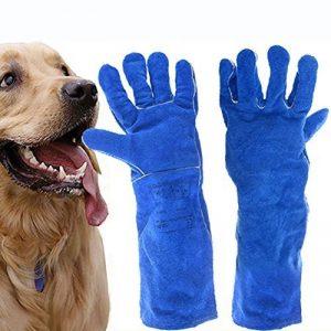 douleur chien médicament TOP 9 image 0 produit