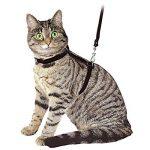 Ducomi® Silvestro Harnais réglable et laisse 105cm en nylon pour chats, lapins et chiots de la marque Ducomi image 1 produit
