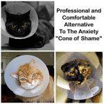 Gilet de récupération de chat etchemise d'animal médical Protection post-chirurgicale Petit de la marque Simply Pets Online image 3 produit