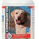 glucosamine chondroïtine msm pour chien TOP 0 image 4 produit