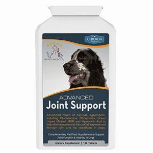 glucosamine chondroïtine msm pour chien TOP 3 image 0 produit