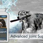 glucosamine chondroïtine msm pour chien TOP 3 image 3 produit