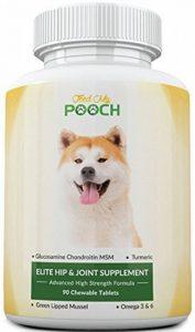 glucosamine chondroïtine msm pour chien TOP 5 image 0 produit