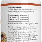 glucosamine chondroïtine msm pour chien TOP 9 image 2 produit