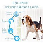 Gouttes pour les yeux pour chien,Gouttes Oculaires,Nettoyant pour Yeux pour Chien,soin des yeux - chien et chat Nettoyant yeux chiot,30ml de la marque PTKOONN image 3 produit