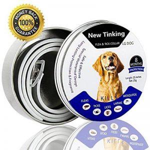 huiles essentielles anti puces et tiques pour chien TOP 11 image 0 produit