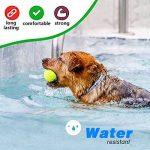 huiles essentielles anti puces et tiques pour chien TOP 11 image 3 produit