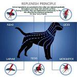 huiles essentielles anti puces et tiques pour chien TOP 12 image 1 produit